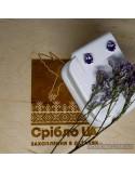 Срібні сережки-цвяшки з вставками аметиста (арт. 20353/9)